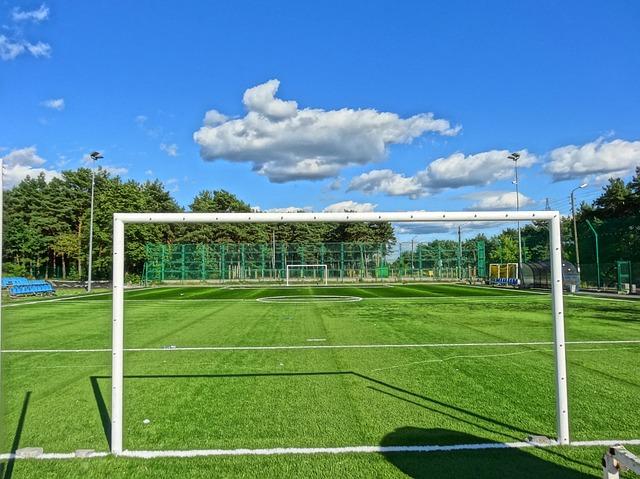 Manutenzione Campo da calcio